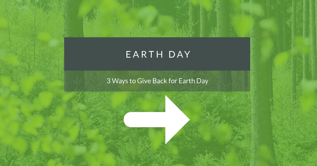 3 ways to give back for earth day - infographic - cta image